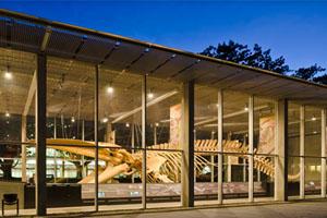 Beaty Museum